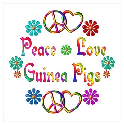 Peace Love Guinea Pigs Wall Art Poster
