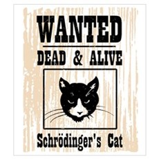 Wanted Schrodingers Cat Wall Art Framed Print