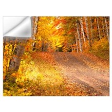 Autumn in U P Michigan Wall Art Wall Decal
