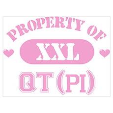 Property of QTpi Wall Art Poster