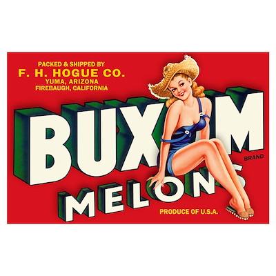 Buxom Melons 2 Wall Art Poster