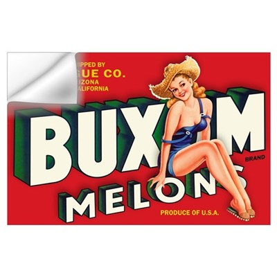 Buxom Melons 2 Wall Art Wall Decal