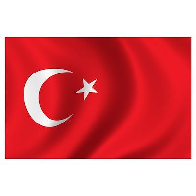 Flag of Turkey Wall Art Poster