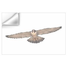 Falcon Nest Wall Art Wall Decal
