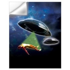 Abduction Wall Art Wall Decal