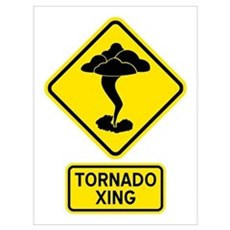 Tornado Crossing Wall Art Framed Print