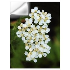 Wall Art - Tiny White Flowers Wall Decal