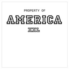 property of america Wall Art Poster