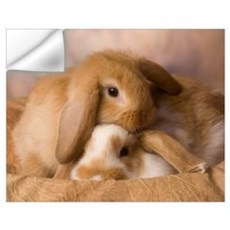 Cuddle Bunnies Wall Art Wall Decal