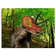 A colorful Triceratops wanders a Cretaceous forest Poster
