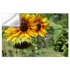 Sunflowers in Summer Wall Art Wall Decal