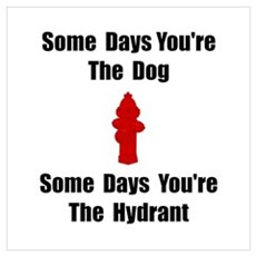 Dog Or Hydrant Wall Art Poster