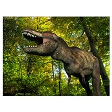 A Tyrannosaurus wanders a Cretaceous forest Poster