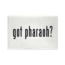 GOT PHARAOH Rectangle Magnet (10 pack)