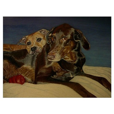 Labrador/Doberman & Pitbull Wall Art Canvas Art