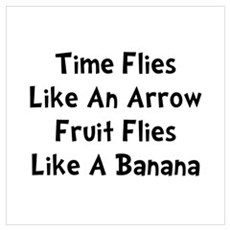 Fruit Flies Wall Art Poster