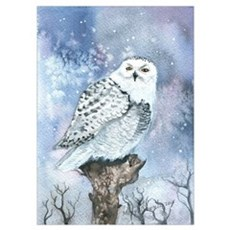 Snowy Owl Wall Art Poster