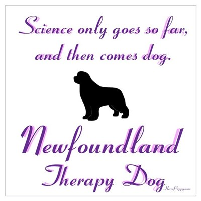 Newfoundland Therapy Dog Wall Art Framed Print