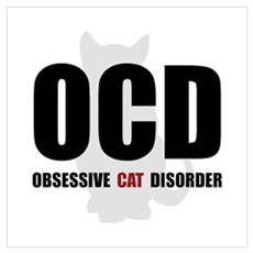 OCD Cat Wall Art Poster