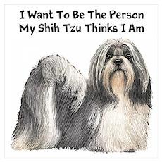 Shih Tzu Wall Art Poster