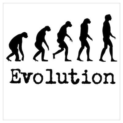Darwin Evolution Design Wall Art Poster