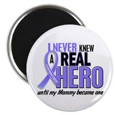 """Never Knew a Hero Esophageal Cancer 2.25"""" Magnet ("""