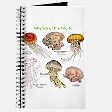 Jellyfish of the World Journal