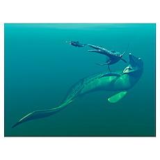 Marine predators of the Cretaceous period Poster