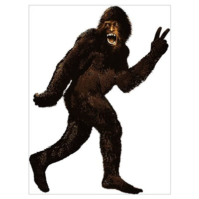 an analysis on bigfoot yeti and sasquatch mythical giant apes There are many story's on cryptozoology and mythical  bigfoot / yeti / sasquatch  while most casts have five toes—like all known apes—some casts of alleged.