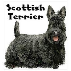 Scottish Terrier Wall Art Poster