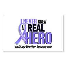 Never Knew a Hero Esophageal Cancer Decal