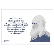 Darwin - Species Wall Art Framed Print