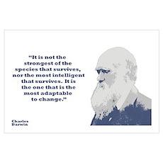 Darwin - Species Wall Art Poster