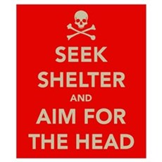 Seek Shelter.... Wall Art Poster