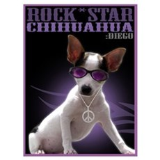 Chihuahuas Rock Wall Art Poster
