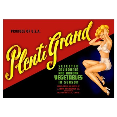 Plenti-Grand Wall Art Poster