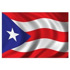 Flag of Puerto Rico Wall Art Framed Print