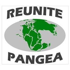Reunite Pangea Wall Art Framed Print