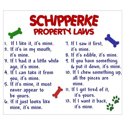 Schipperke Property Laws 2 Wall Art Poster