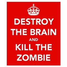 Destroy the brain.... Wall Art Poster
