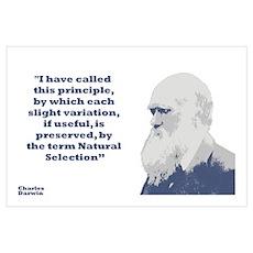 Darwin - Selection Wall Art Poster