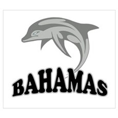 Bahamas Dolphin Souvenir Wall Art Canvas Art
