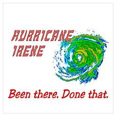 Hurricane Irene Been There Wall Art Poster