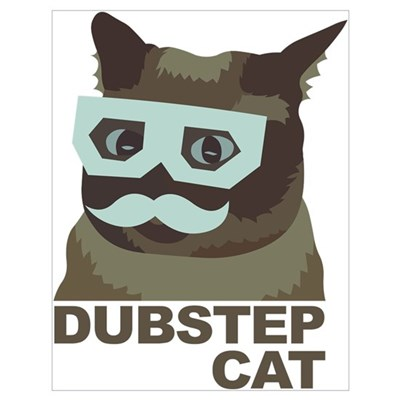 Dubstep Cat Wall Art Poster