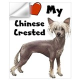 Chinese crested Wall Decals