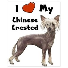 I Love My Chinese Crested Wall Art Framed Print