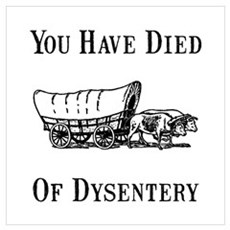 Died Of Dysentery Wall Art Framed Print