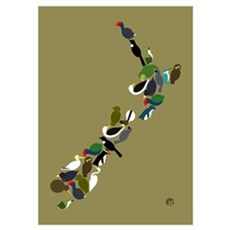 NZ Birds Map Wall Art Poster