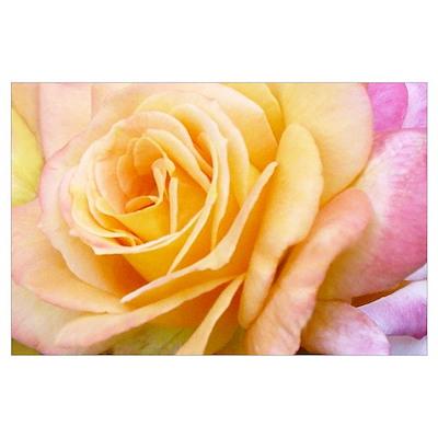 Yellow Pastel Rainbow Rose Wall Art Poster