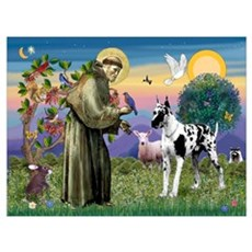 St. Francis & Great Dane Wall Art Poster